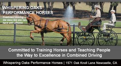 WHISPERING OAKS PERFORMANCE HORSES